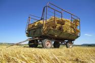 2017现有的惠农补贴政策主要有哪些?给农民带来了什么实惠?