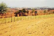 农村土地流转可以贷款啦! 农民创业致富路又近了一步!