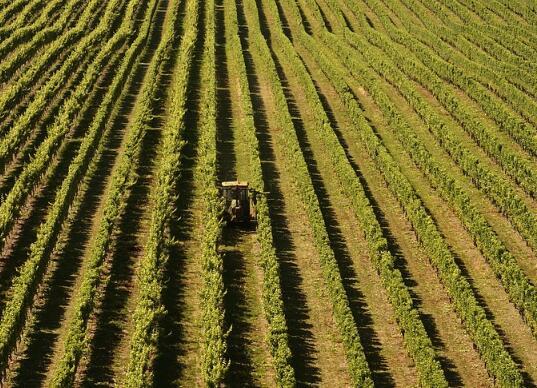 2017成都市关于推进农村一二三产业融合发展的实施意见(全文)