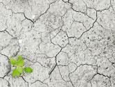 土壤污染防治法草案:设立土壤污染防治基金