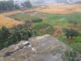 宅基地使用权如何流转? 农民居住权利如何保障?