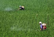 我国农业生产中土壤贡献率比40年前下降10%