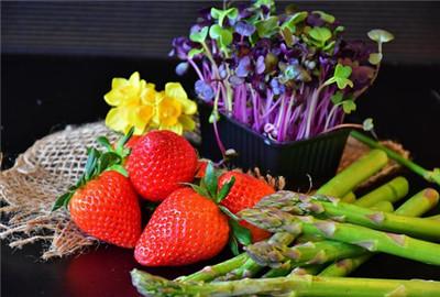 济南八种蔬菜价格上涨(内附夏季蔬菜保鲜方法)