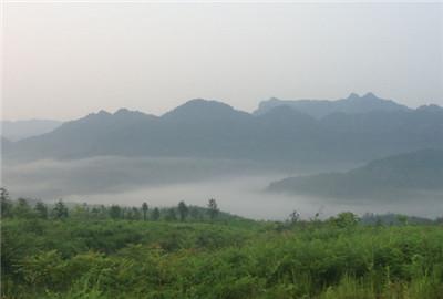 河南孟州市供给侧改革构建现代农业发展