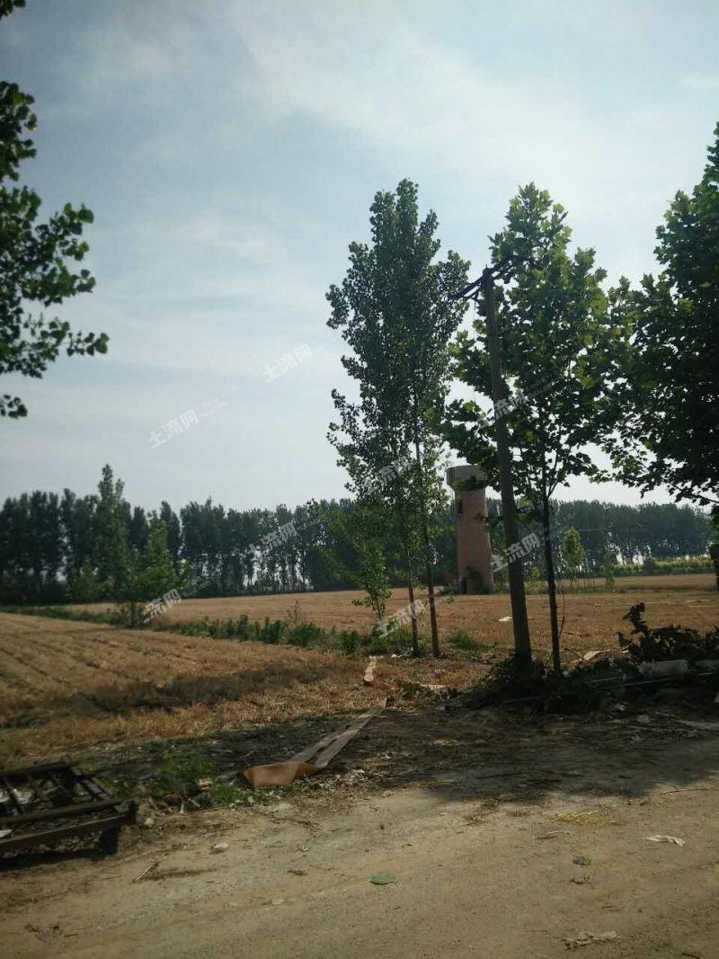 邯郸市做什么生意赚钱?乡下有四亩地做什么项目好?