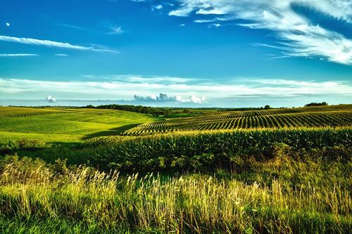 村集体代表村民签订土地流转合同是否有效?流转后能改变土地用途吗?