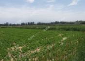 福建龙海:2017年第一批征收土地的批复下来了!看看有你们村吗?(附《批复》全文)