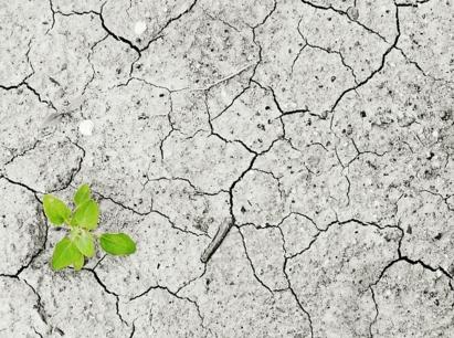济南市土壤污染防治工作方案  济政发〔2017〕15号