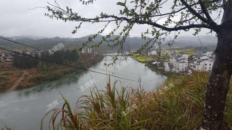 江西婺源县土地面积有多大?种植什么作物或树赚钱?