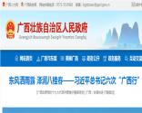 广西壮族自治区关于金融支持县域经济发展的实施意见(桂政办发〔2017〕95号)