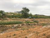 2017年海南省高标准农田建设项目管理暂行办法