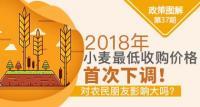 2018小麦最低收购价政策:首次下调对农民朋友影响大吗?