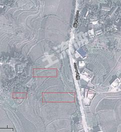 泸县百和镇8亩水田8旱地地出租