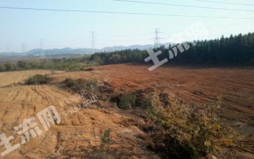 36亩平山地寻求项目合作或出租