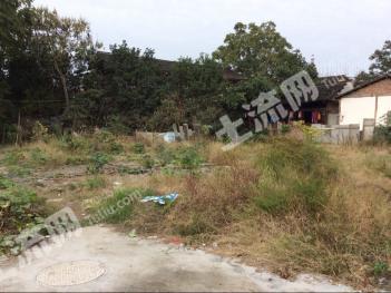 芷江侗族自治县74072平方米国有土地使用权拍卖公告