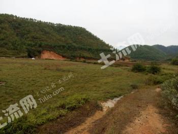 广东肇庆怀集县230亩农用地出租