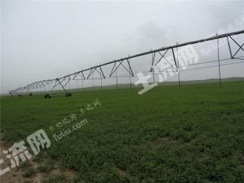 内蒙古包头市达茂旗3300亩农用地转包