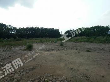 广州原纸厂地块出租(海珠区工业大道南广纸路)