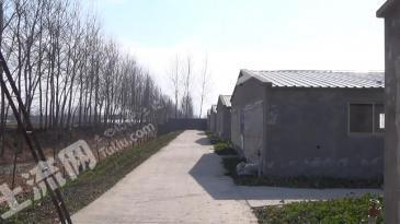 江苏盐城16亩生态养殖场出租