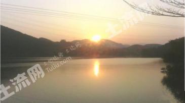 (转让)肇庆市高要1100亩湖景生态农场
