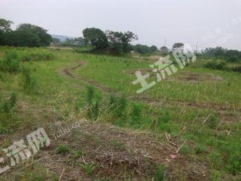 九江庐山脚下100亩左右的荒地(适合做生态休闲农庄)