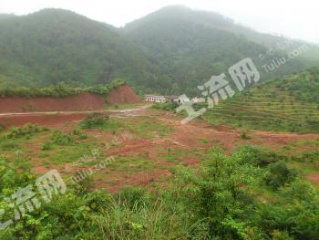 (转让)肇庆市省道旁300亩优质农业基地