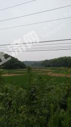 湖南省湘潭县5000亩山地对外租赁