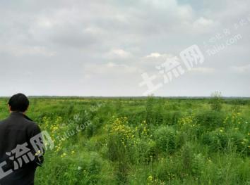江西进贤三里1300亩湖滩出租0065