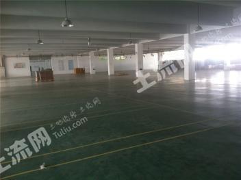 胜浦整幢全新厂房出售,28000平带装修