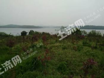 转让湖南湘潭90亩有林地