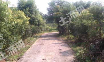南京江宁区40亩家庭农场