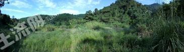 福州出租15亩山地,适合养殖种花各类操作