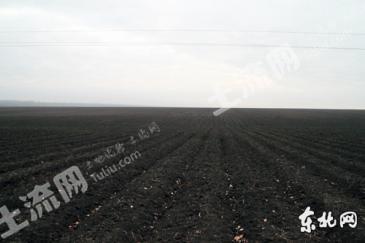 吉林松原4600亩黑土地转让