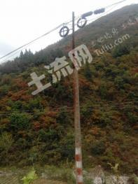 Sz305陕西省安康市2万亩山林价优转让