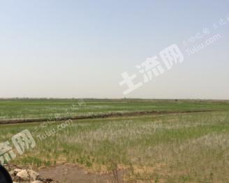 转包20000亩农业用地
