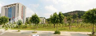 晋江长兴路办公用地8533㎡,每平仅0.18万