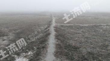 新疆伊犁察县羊场48亩农业用地转让1147