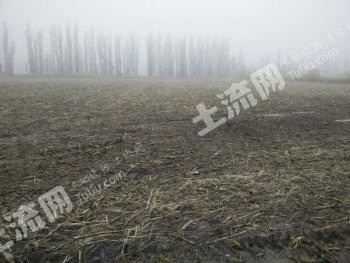 新疆伊犁察县40亩农业用地转让1148
