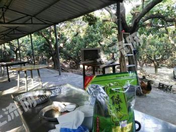 (出售)东莞市15亩私人休闲农庄
