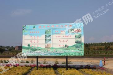 黑龙江省七台河市北兴农场中心苗圃转让
