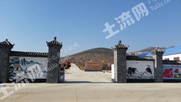 徐州铜山区 300亩 农场 合作