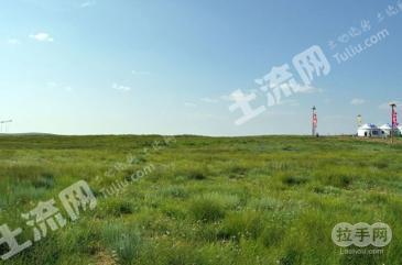 内蒙古鄂尔多斯鄂托克旗2300亩草场出租