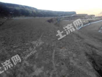 租赁35.98亩旱地
