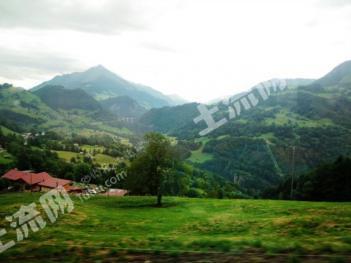 省级旅游村200亩荒山流转出售