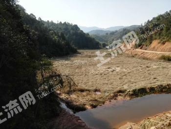 出租肇庆广宁1350亩低矮山地