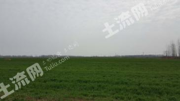 No.25阜阳有2001亩耕地对外租赁