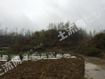 重庆彭水善感300亩生态农业用地