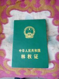 延安延长县管村250亩山地林地
