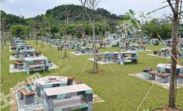 开发.中国雪山乡村民宿度假区旅游项目