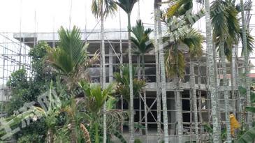 南岛农场场部300平框架结构房2000元/平米